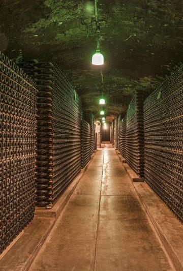L'export e la viticoltura del Sud